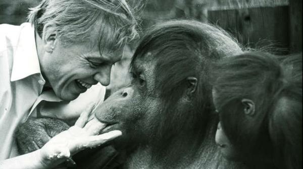 Дэвид Аттенборо во время съемки фильма «Жизнь»