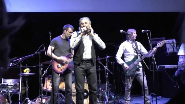 Анатолий Алешин на концерте