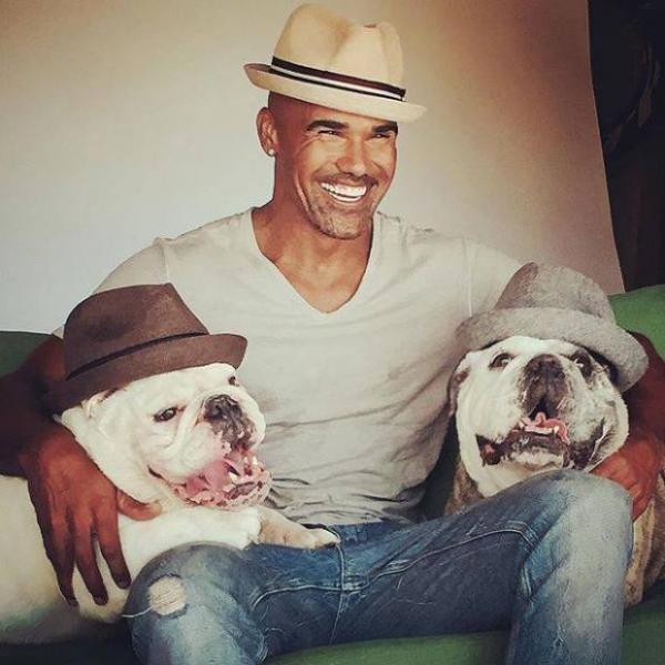 Шемар Мур с собаками