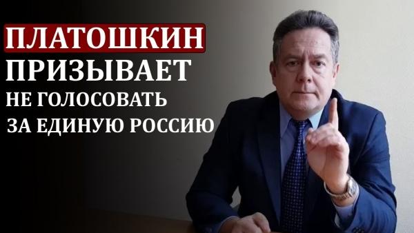 Платошкин против «ЕР»